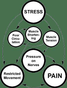 Blog pain cycle