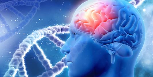 alzheimers-bipolar-link-research2